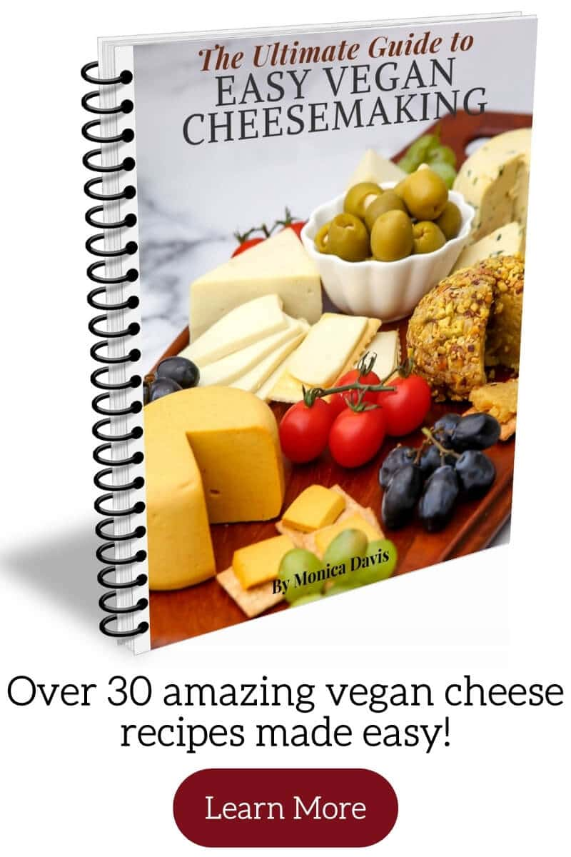 A vegan cheese cookbook with a button to click for more information.